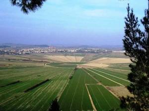 Etang de Montady depuis l'oppidum